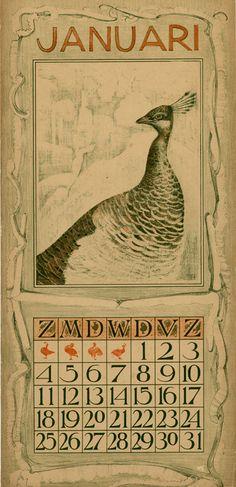 calendar 1903 Januari