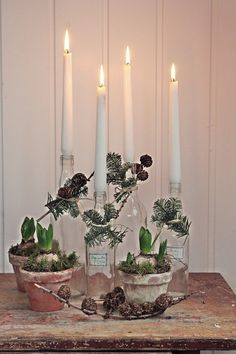 candles in glass bottles with greenery and cones Natural Christmas, Noel Christmas, Rustic Christmas, Winter Christmas, Vintage Christmas, Christmas Crafts, Scandinavian Christmas Trees, Decor Scandinavian, Christmas Tree Decorating Tips