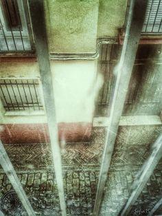 Meridiana claridad (Sofía Serra): Salvífica