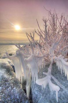 Icy Sunset #Beautifu mother nature moments
