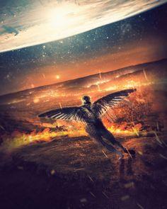 """Fallen Angel""   📸 via @unsplash | #awesome_surreal  #creative_ace #Visual_Creatorz #creativeoptic #photoshop_creative #createcommune #spacewheel #simplycooldesign #thelikedphoto #igcreative_editz #ps_summertime #ourcolourdays #artofvisuals #ourmoodydays #enter_imagination #eclectic_shotz #all2epic #theimaged #way2ill #shotzdelight #watchthisinstagood #visualsoflife #hubs_united #heatercentral #fatalframes #acreativevisual #thegraphicspr0ject #ig_color #d_expo #creatorgrams"
