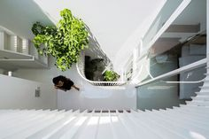 Narrow Vertical Home Maximizes Light and Space in Vietnam - http://freshome.com/narrow-vertical-home-Vietnam/