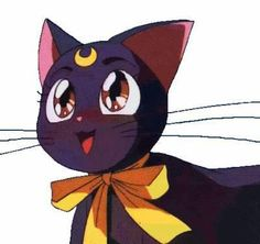 Name: Luna  She has to guide Usagi and Sailor Moon.   Her mission was to help Serena find the princess of the moon, while protecting the earth from the evil Dark Kingdom.
