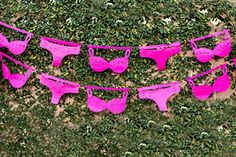 "Bridal Shower FUCHSIA ""Lingerie"" Theme TISSUE Paper Banne... https://smile.amazon.com/dp/B01MXIO031/ref=cm_sw_r_pi_dp_x_nnPyybXZTXSV1"