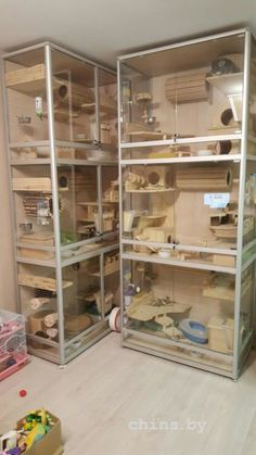 Hamster Diy Cage, Ferret Cage, Pet Rat Cages, Pet Cage, Guinea Pig House, Guinea Pigs, Degu, Cage Chinchilla, Mouse Cage
