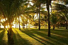 #Mauritius at Shandrani Beach Blue Bay