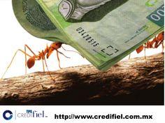 #credito,#credifiel,#pension,#imprevisto,#jubilacion¿cuáles son los principales gastos en el manejo de tarjetas? Ten cuidado con las comisiones de tarjetas de crédito. Dependiendo el banco Son diversas. Hay comisión por no realizar tu pago a tiempo, por reposición de tarjeta en caso de robo o extravío, por disposiciones de efectivo de la tarjeta. Asi que valora y equipara si te conviene tener esa tarjeta. http://www.credifiel.com.mx