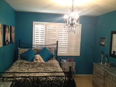 teal bedroom for girl - Google Search