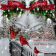 Merry Christmas Goodnight