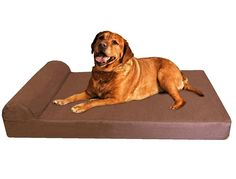 Extra Large Head Rest Orthopedic Gel Cooling Memory Foam Pet Dog Bed, Waterproof Internal Case and Washable External Suede Cover Inch, Brown -- Read more at the image link. (This is an affiliate link) Xxl Dog Beds, Pet Beds, Big Dogs, Large Dogs, Dog Items, Large Dog Breeds, Costco, Pet Supplies, Pets