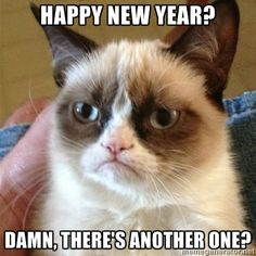 Happy New Year? Damn, there's another one?