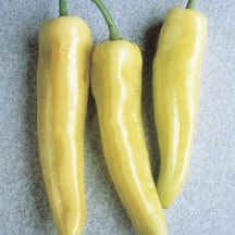 Hungarian Yellow Hot Wax Banana -- Jung -- spicy, sweet, med-hot. One of the best peppers for cool climes, high yields. Pkt 100 seeds 2.25 #pizzatopper #marketgarden