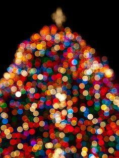 Twinkle,Sparkle,Christmas=Magic