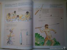 Libros de segunda mano: LA HISTORIA MAS ANTIGUA DE LA PREHISTORIA AL MUNDO GRIEGO Carmen Cortes Salinas Akal 1995 - Foto 10 - 55421238