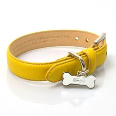Coach COACH dog collar charm with yellow x silver leather x metal material ☆ beauty products for dogs collar 4000-x27044