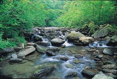Curtis Creek, McDowell County... a favorite close camping spot