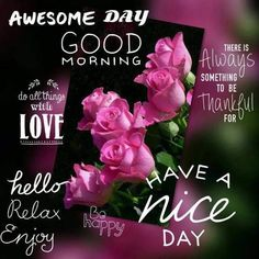 Good Evening Messages, Good Evening Wishes, Good Evening Greetings, Morning Greetings Quotes, Morning Messages, Good Morning Quotes, Morning Sayings, Good Evening Love, Have A Good Night