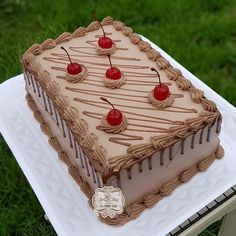 Cake Decorating Frosting, Cake Decorating Designs, Cake Decorating Techniques, Cake Designs, Square Cake Design, Square Cakes, Gateau Iga, Cake Icing, Cupcake Cakes