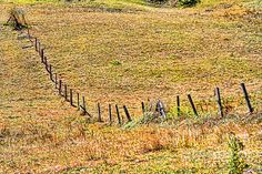 Beautiful hill sides on the mountain, cut grass to make hay for the livestock in the Winter. A fence post to keep the bulls from getting out... Yup, I crossed over that field, yup, the bulls did not like that.  I RAN! http://diana-sainz.pixels.com Celoca, Perrozo, Spain,