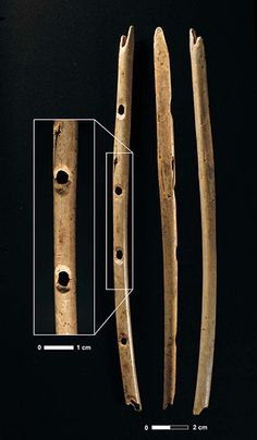 A flute made from the wing bone of a griffon vulture from 40,000 years ago. Found with fragments of mammoth-ivory flutes in Hohle Fels, a cave in southern Germany, it suggests a developed musical style already existed.