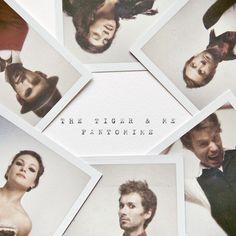 Music Band Photography - polaroids