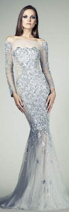 Tony Ward Couture SS 2014 silver gown cute but without the fake cover on top