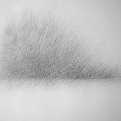 Expansion Pencil on paper Roanna Wells