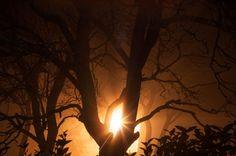 Mystery light