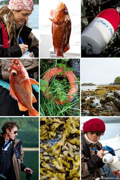 Sitka, Alaska | Seafood Culinary Retreat on FamilyFreshCooking.com © MarlaMeridith.com