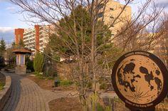 North campus - Humber Arboretum #Humbercollege