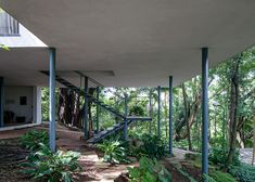 Glass house by Lina Bo Bardi (photography series by Leonardo Finotti) in São Paulo