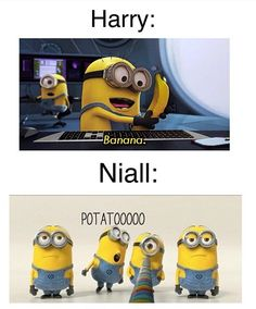 this is the best thing ever cuz first off i love one direction bananas and potatos and the minions