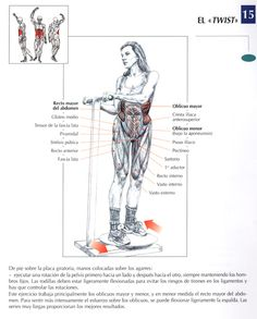 deportes Weight Lifting Motivation, Bodybuilding, Yoga Anatomy, Workout Posters, Abs Workout For Women, Gym Training, Printable Workouts, Muscle Fitness, Physical Fitness