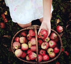 Can't wait to head out Apple picking this Autumn. Hunter wellies on, cosy layers wrapped around me, picking the most crisp, red apples to make a delicious home made apple pie with. The Animals, Autumn Day, Autumn Leaves, Winter, Hello Autumn, Fallen Leaves, Fall Season, Tis The Season, Apple Season