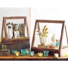 Roost A-Frame Display Cases - Set Of 2
