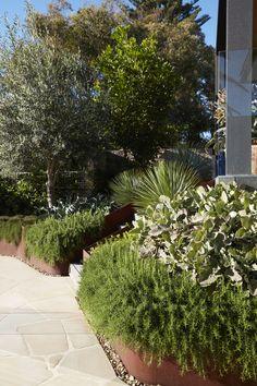 Corten Steel, Gardening Tips, Planter Pots, Sidewalk, Environment, Leaves, Climbers, Landscape, Green