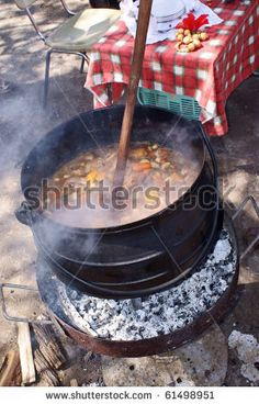 Potjiekos Stew from South Africa ( Veggies, Meat, Potatoes, spices) South African Recipes, Ethnic Recipes, South Africa Map, Little Passports, Course Meal, Lunch Recipes, Around The Worlds, Yummy Food, Snacks