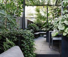 How to create an inner-city terrace garden # fashiondesign . Back Gardens, Small Gardens, Outdoor Gardens, Roof Gardens, Small City Garden, Home And Garden, Small Courtyards, Rooftop Garden, Garden Stones