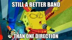 .hater on one direction