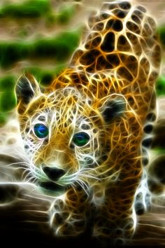 Fractal Leopard Baby