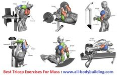 Building biceps is one of the important parts of body building, but to get…