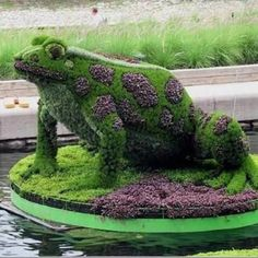"""Just love this frog...He looks like """"Rupert"""" which is the name of the frog in the story I made up for Autumn. May try a smaller version. Good summer project."""
