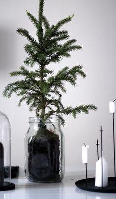 4 Easy DIY Christmas Decoration Ideas