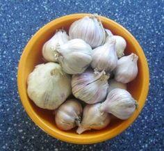 How to Freeze Garlic - 20Add to LinkedInPost to Google+Send via Shareaholic MailAdd to RedditPost to StumbleUpon Filed Under: frugal, garlic