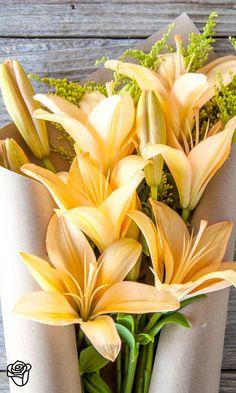 The Bouqs: Bouquets, Simplified.Hermosas lilies para una gran amiga.Feliz cumpleanios!