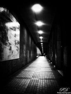 This Eerie Walkway   Flickr - Photo Sharing!