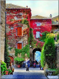 Vertical Garden| Serafini Amelia| Ingresso di Civita di Bagnoregio, #Italy