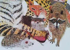 Afbeeldingsresultaat voor brian wildsmith illustrations