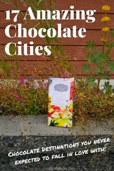 Planning the dream vacation but not sure where to go? Consider pursuing the chocolatey trip of your dreams! Read me to discover 17 of the most surprising chocolate cities around the world, some of which may be closer than you think! Packing Tips For Travel, Travel Advice, Travel Guides, Dream Vacations, Vacation Trips, Amazing Destinations, Travel Destinations, Travel Around The World, Around The Worlds