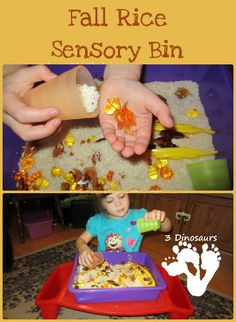 Fall Rice Sensory Bin from 3 Dinosaurs